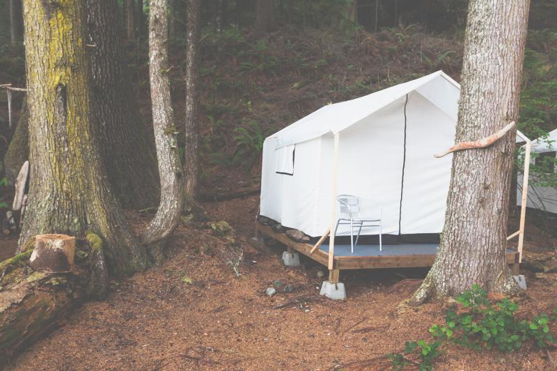 Orca-Camp-Wild-Coast-Adventures-British-Columbia-30.jpg