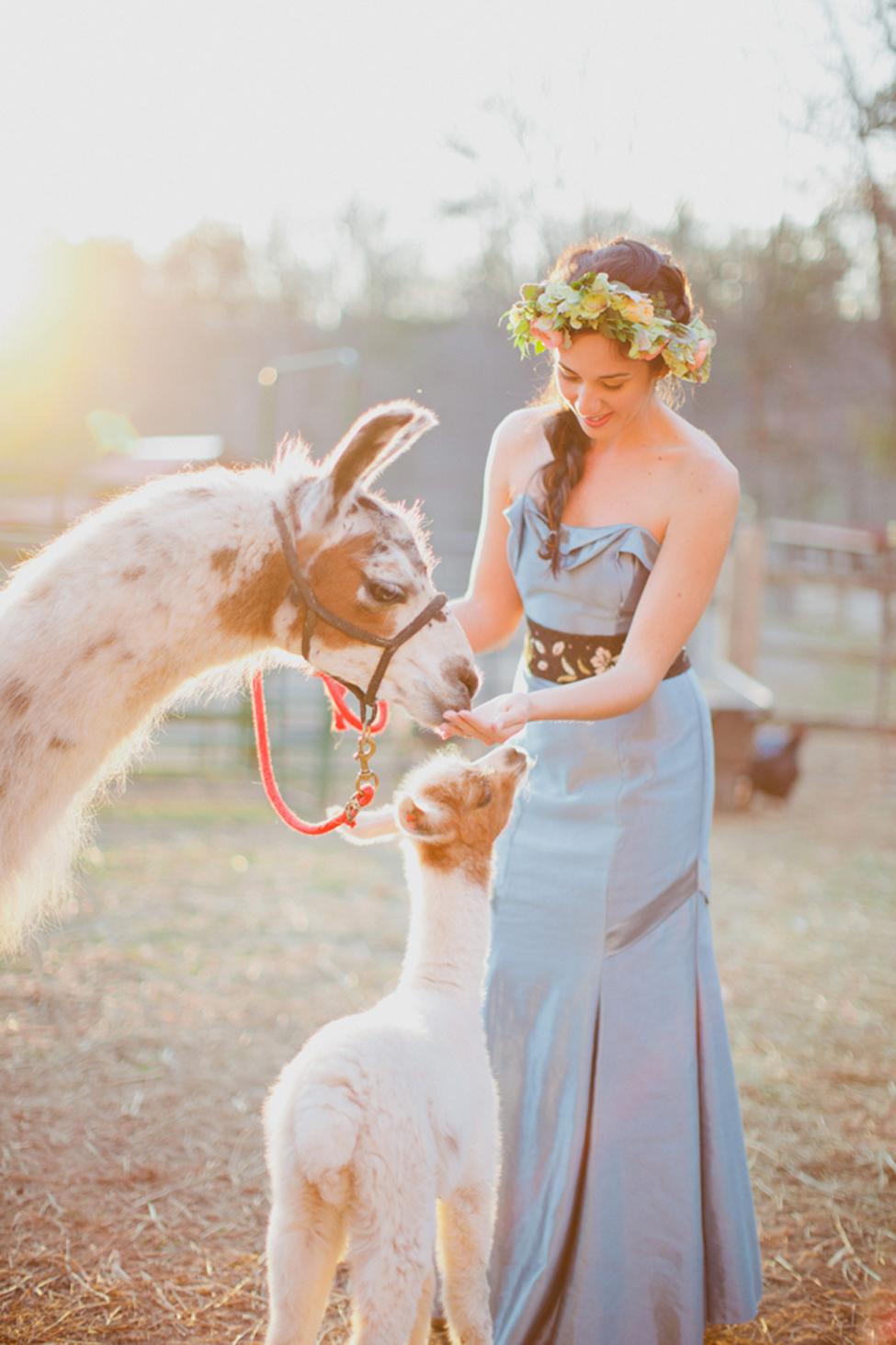 jameykay_arlie_folk_farm_wedding091.jpg