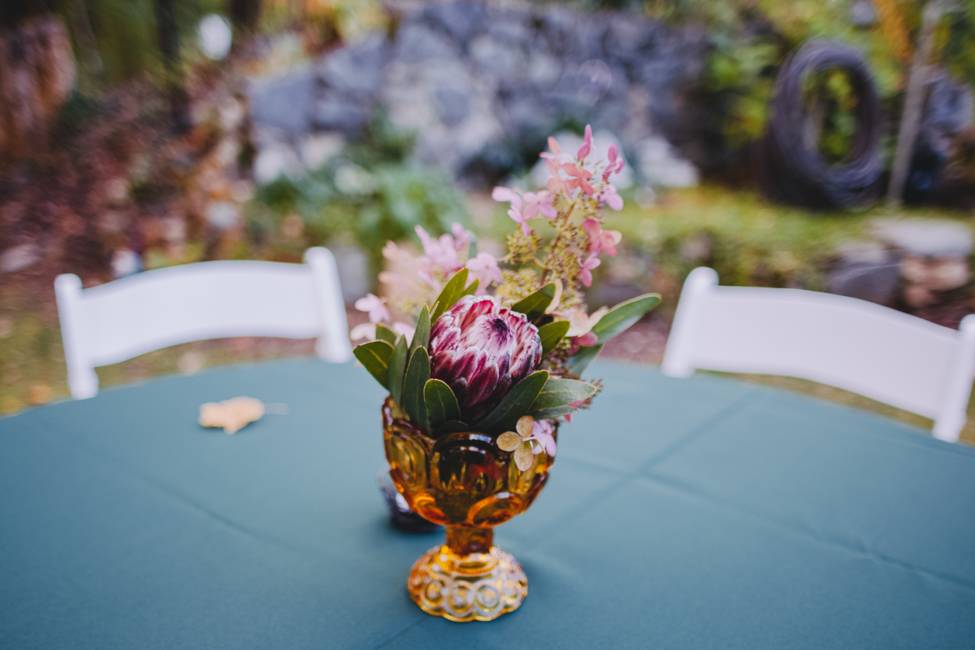 asheville-black-mountain-sanctuary-nc-alternative-wedding-photographers-52.jpg