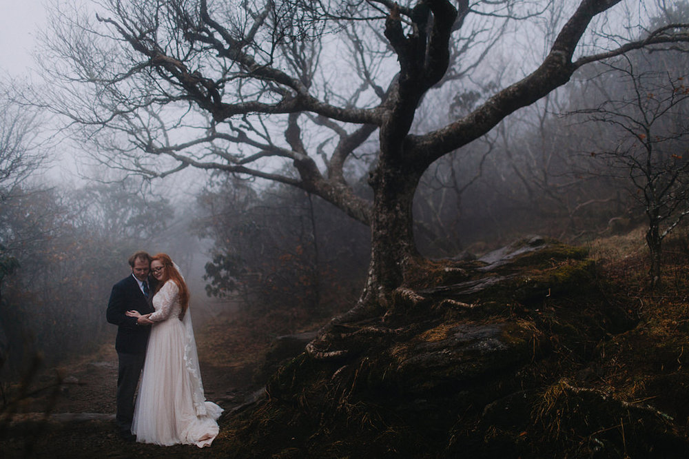 foggy-craggy-gardens-elopement.jpg