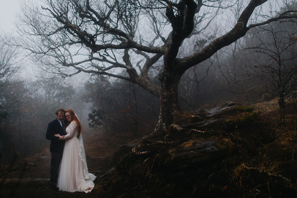 Ashlyn And Aaron Foggy Craggy Gardens Elopement Asheville Nc