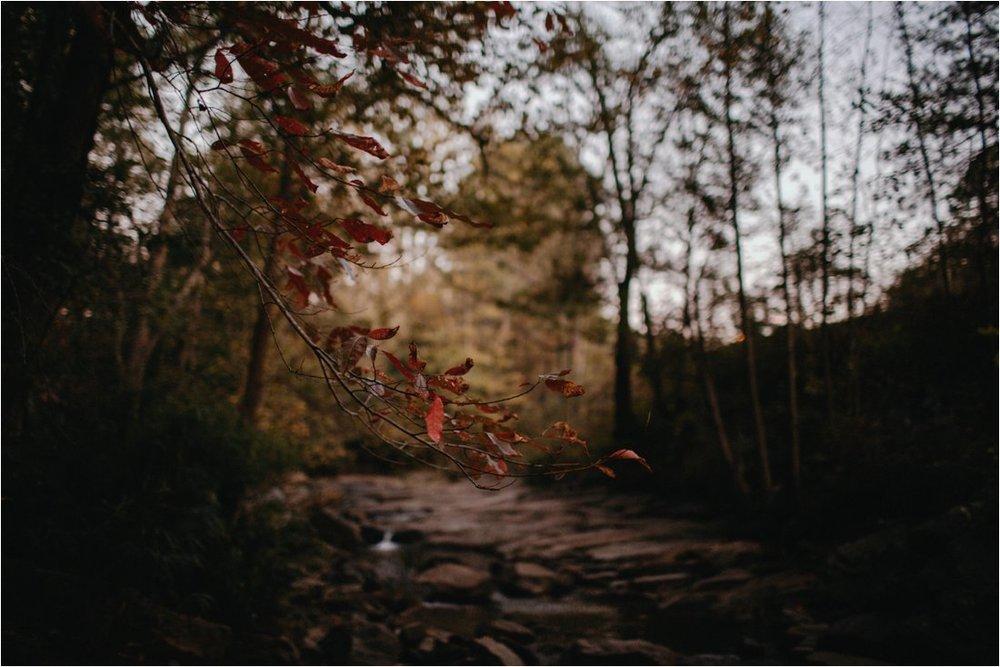 autumn-asheville-botanical-gardens-elopement_0015.jpg
