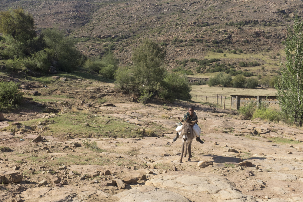 What passes for a road in Lesotho