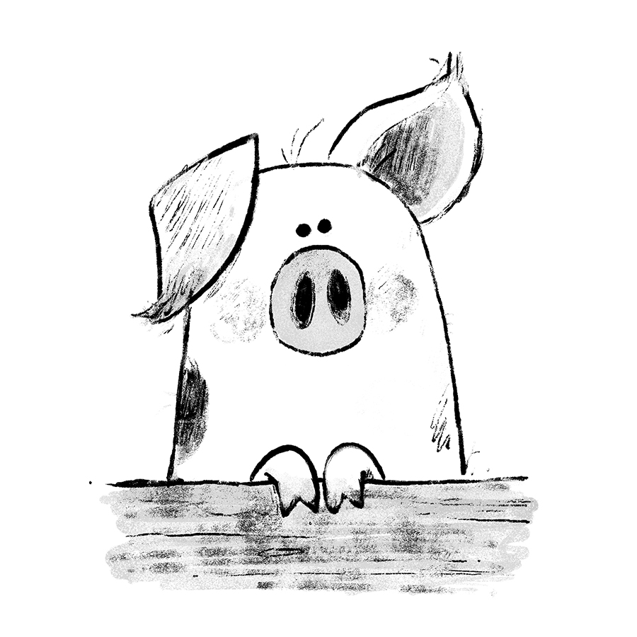Pig illustration by Chris Chatterton