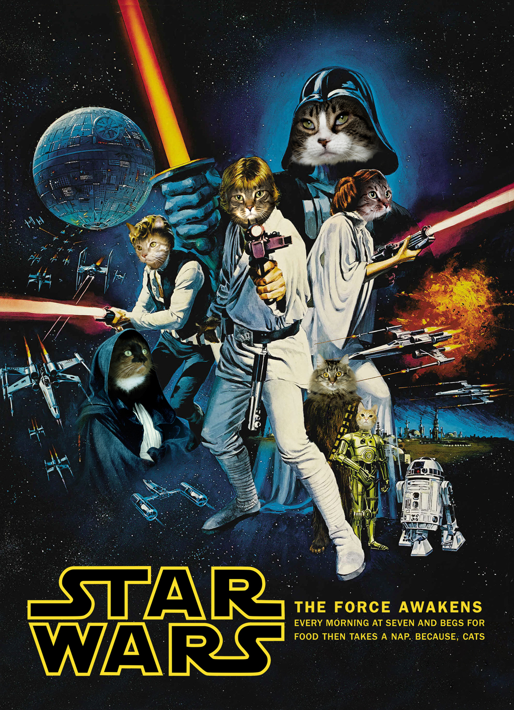 The-Artful-Union-Holiday-Cat-Star-Wars.jpg