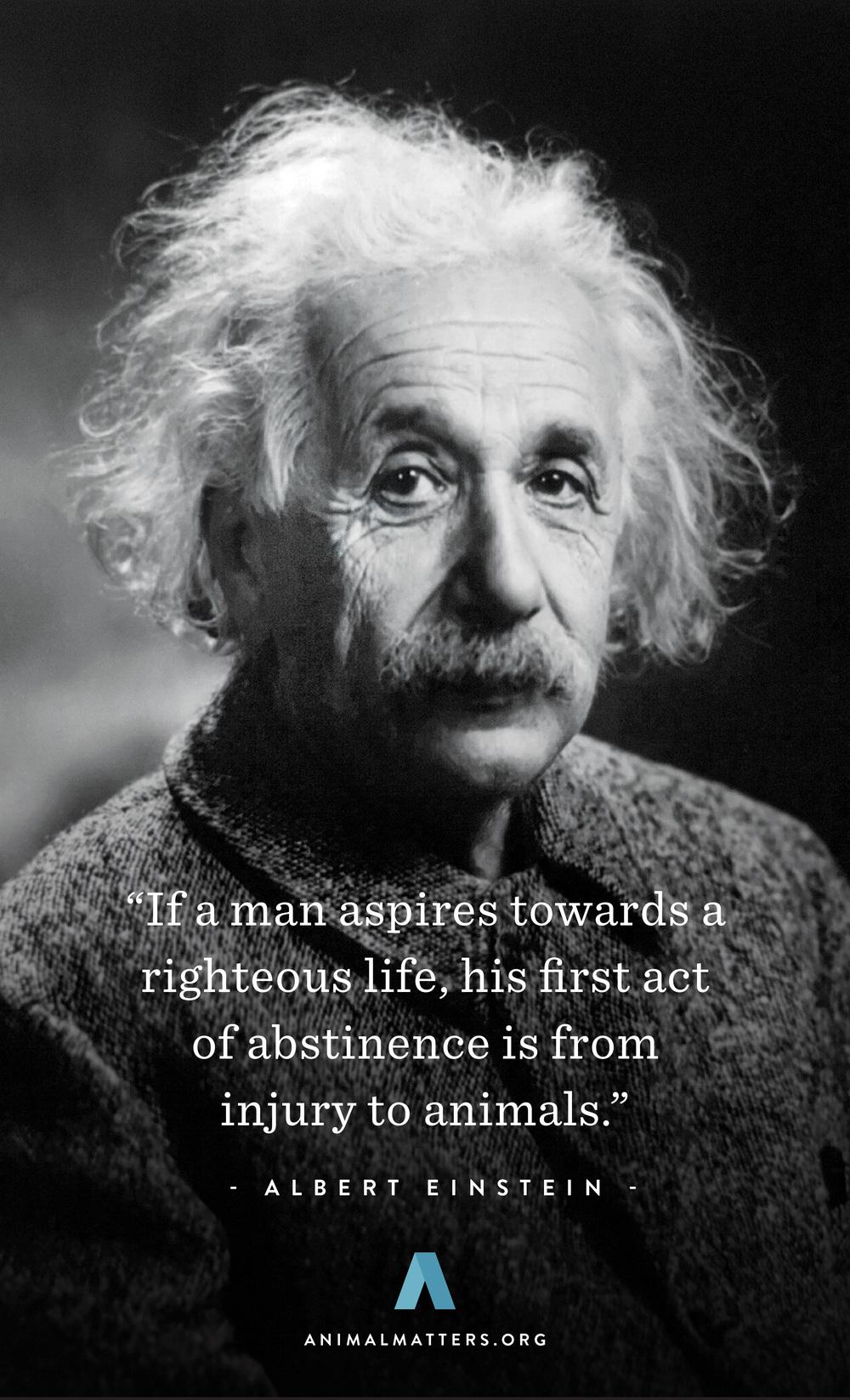Albert-Einstein-Animal-Rights-Quote