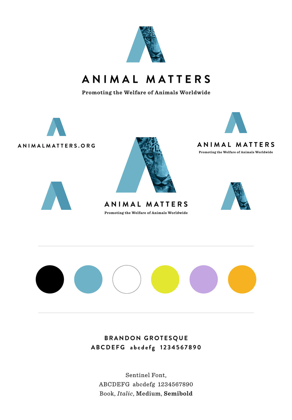 Animal-Matters-Brand-Identity-Design-Guide.jpg