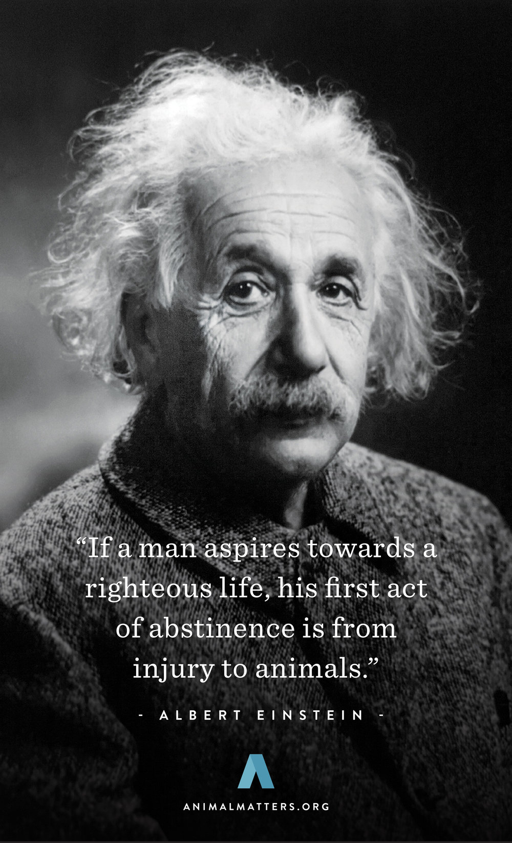 Animal-Matters-Einstein-Quote-Rights-Poster-Ad-Design.jpg
