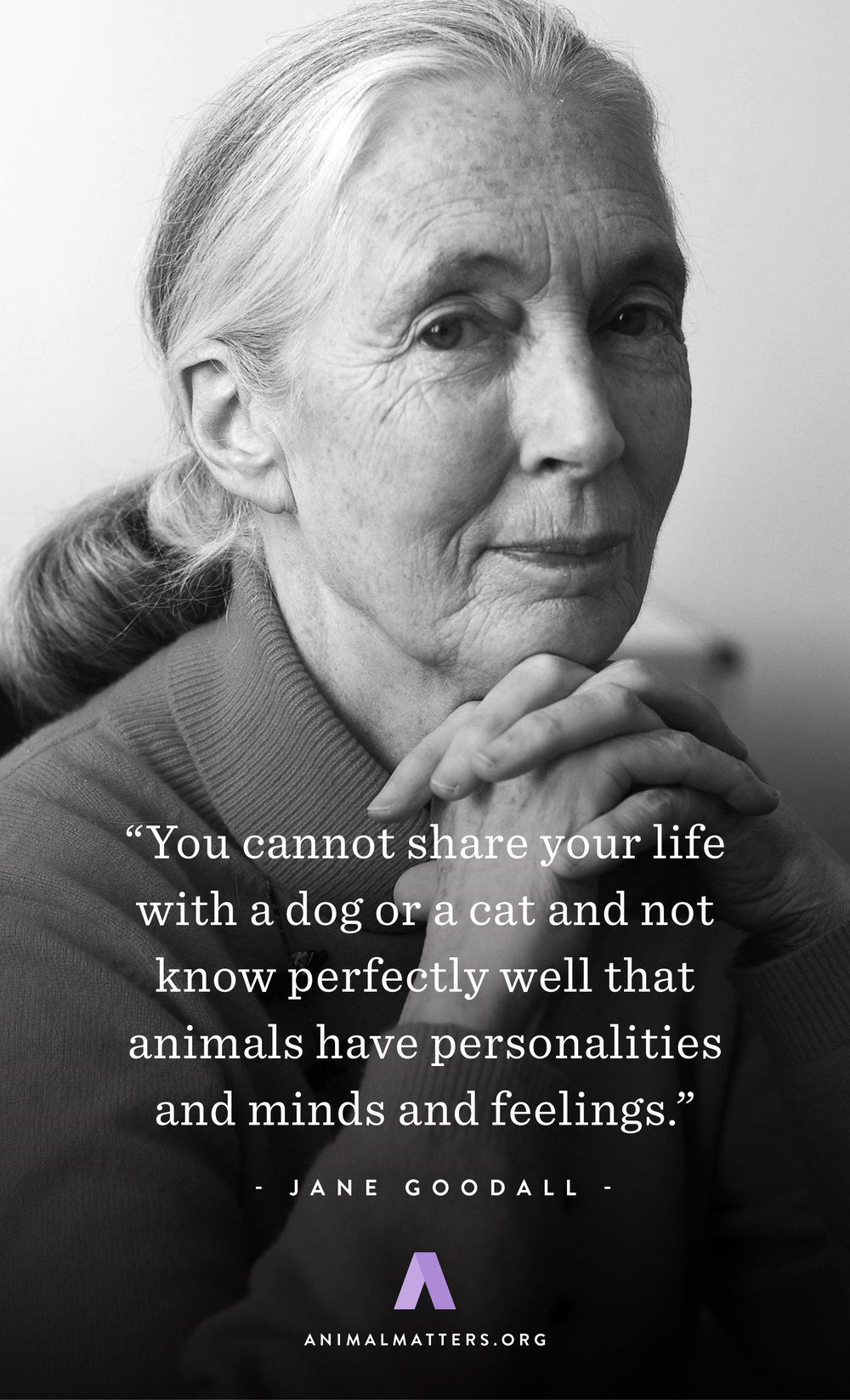 Animal-Matters-Jane-Goodall-Quote-Rights-Poster-Ad-Design-PETS.jpg