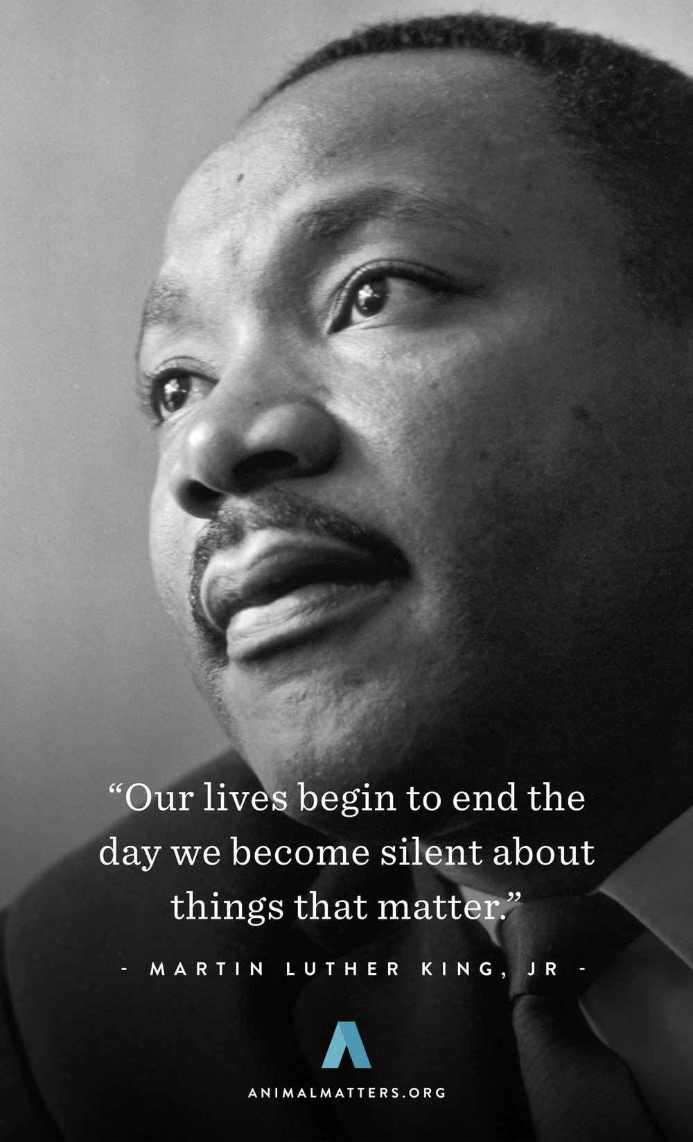 Animal-Matters-MLK_Martin-Luther_King-Quote-Rights-Poster-Ad-Design.jpg