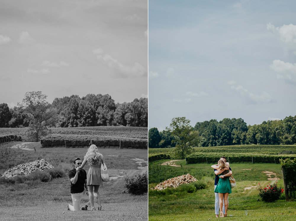 004-stone_bridge_winery_engagement_proposal.jpg