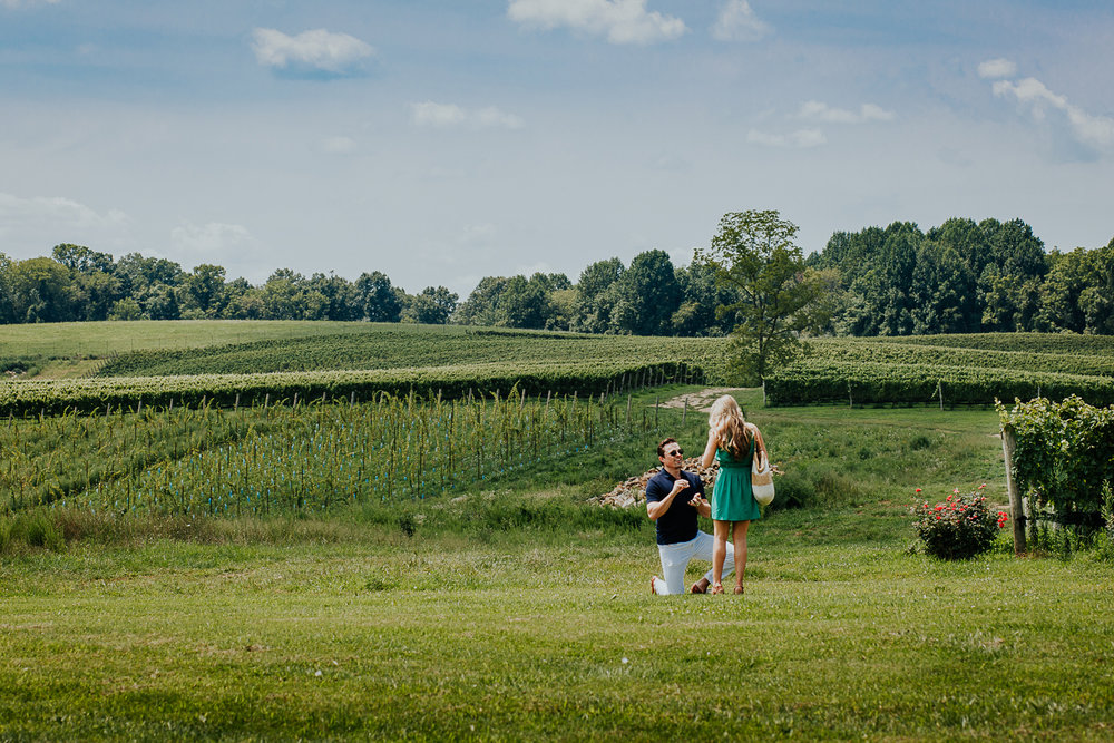 003-stone_bridge_winery_engagement_proposal.jpg