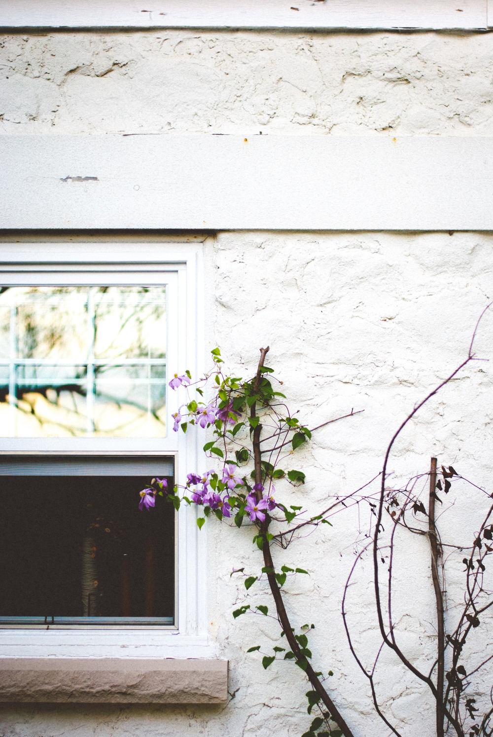 white stone and windows