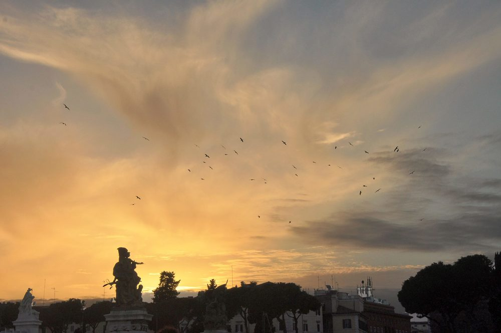 EHP-Spring 2014: The sunset on our way back to the Cenci! (Photo Credit: Karen Kuo)