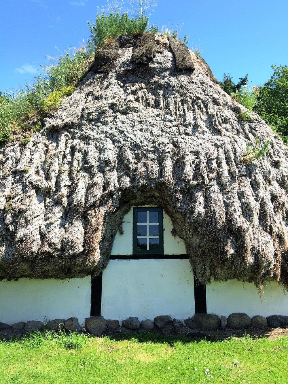 seaweed house.jpg