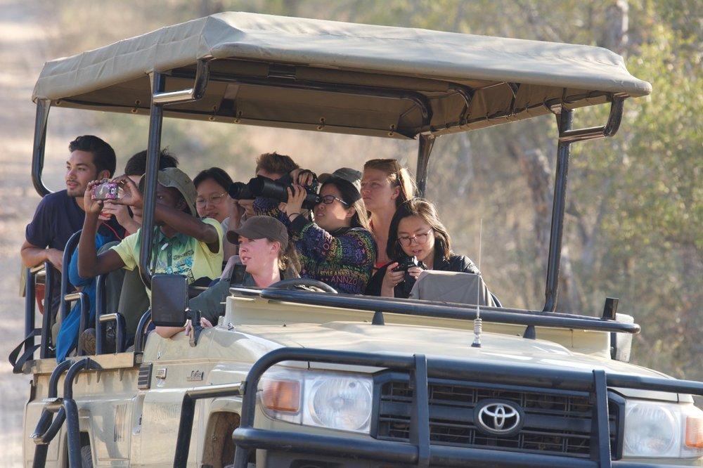RISD students on safari Leopard sighting.jpg