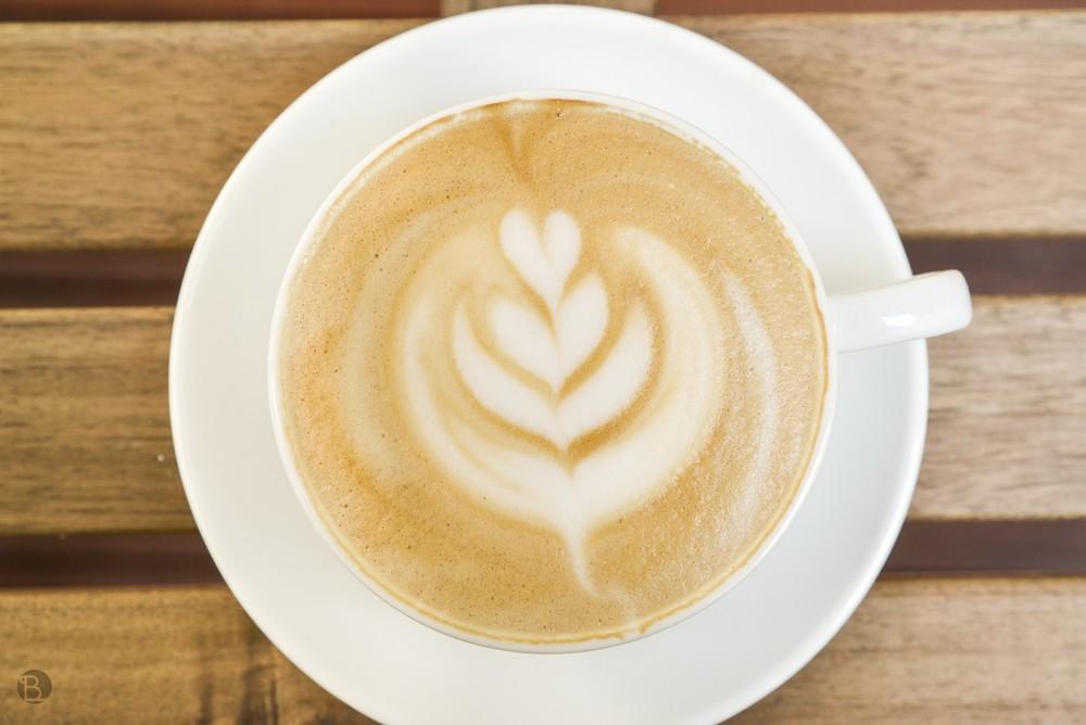 latte (3 of 4)_tn.jpg