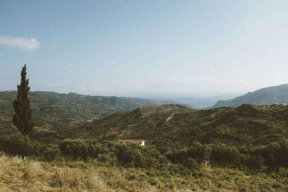 Landscape VIII