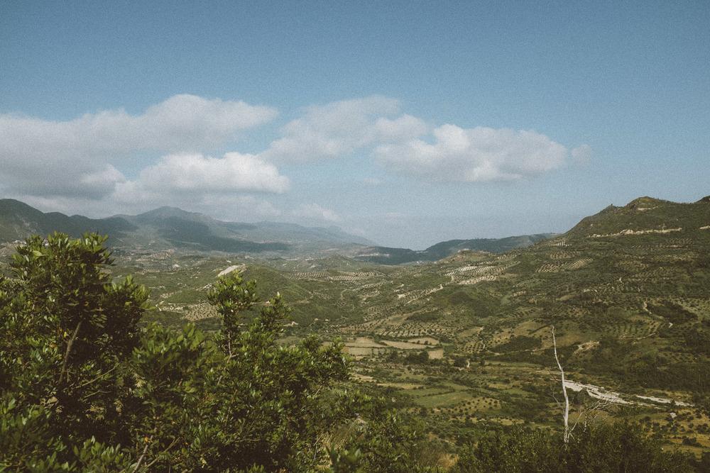 Landscape X