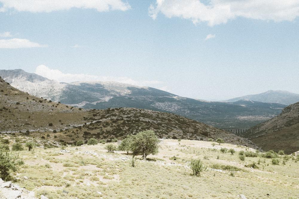 Landscape XVII