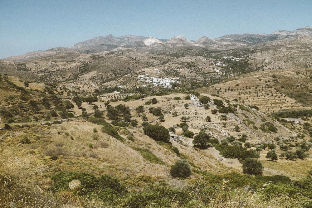 Landscape VI