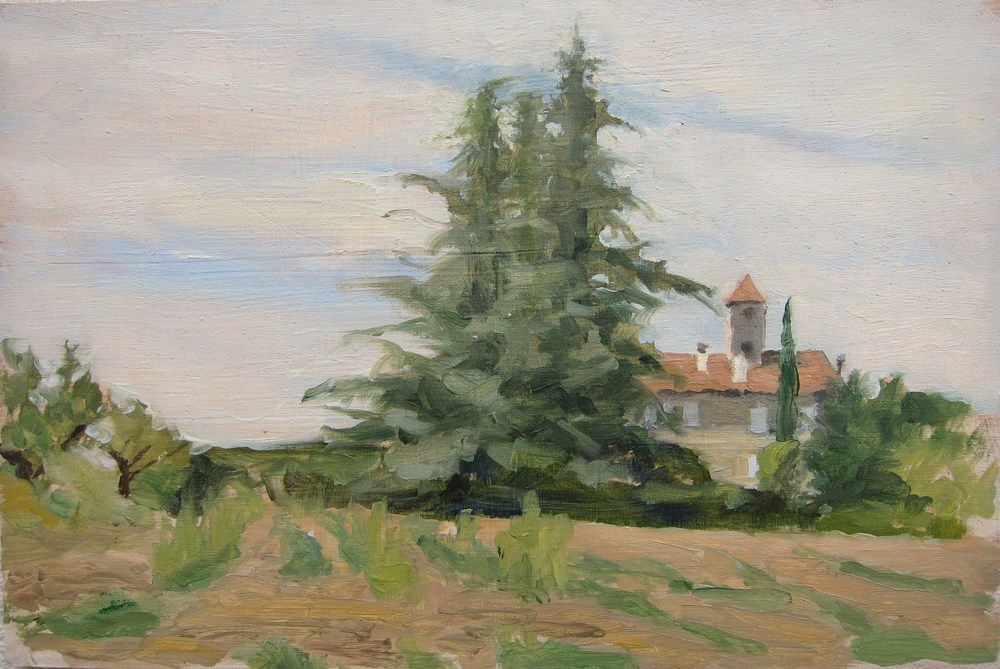 landscape (19).JPG
