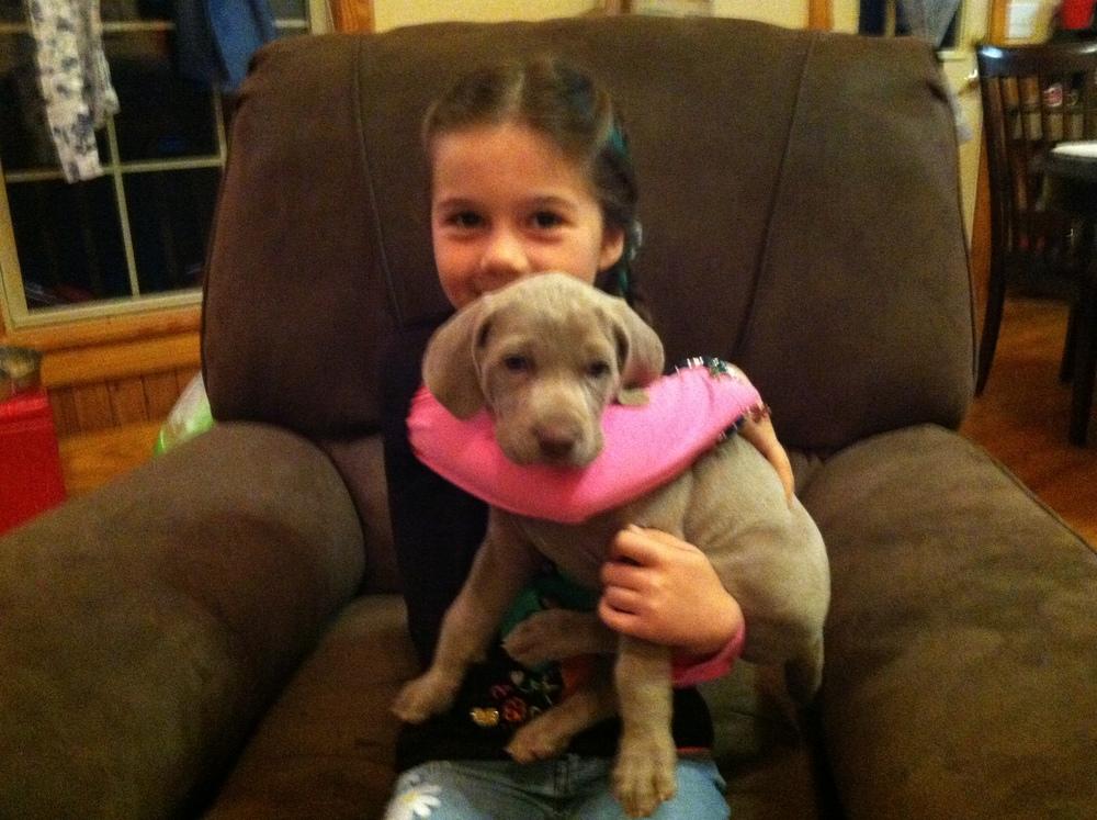 A Quaker Pointe Puppy