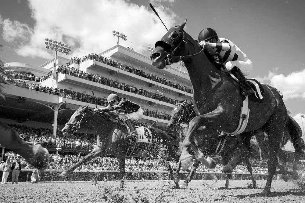 Go Maggie Go, 4, ridden by Luis Saez finishes 4th after falling behind on the final turn of the 2016 Kentucky Oaks at Churchill Downs in Louisville, KY on May 6, 2016.