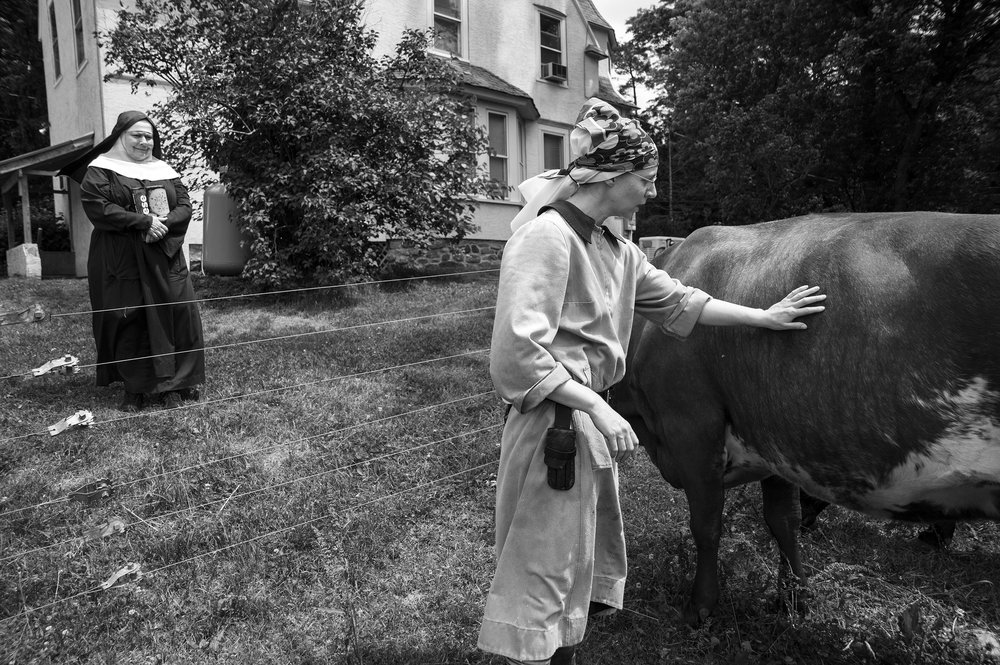 Sister Noella Marcellino, left, and Suzanne Erickson, postulant of the abbey, tend the heritage breed Milking Shorthand named Red Wing Lilly at the dairy of the Abbey of Regina Laudis in Bethlehem, Connecticut on Tuesday, June 24, 2014.