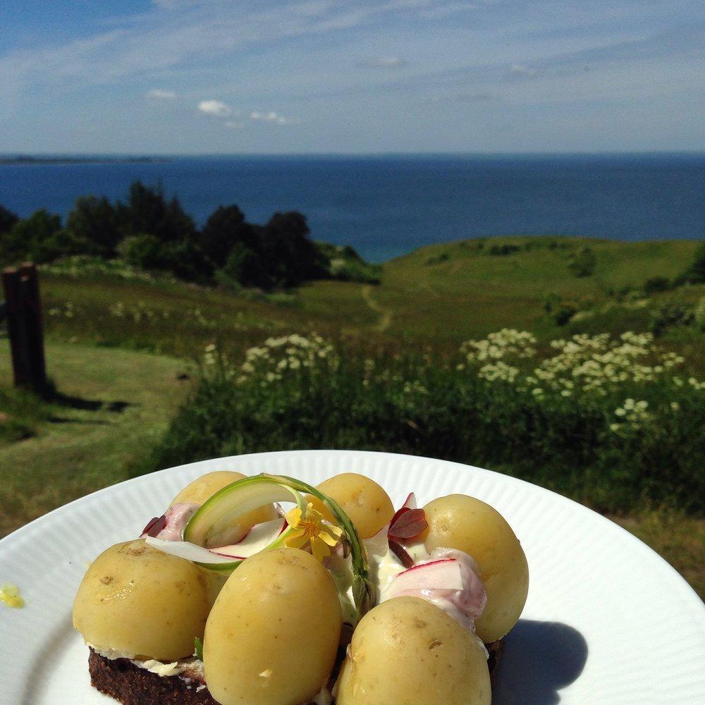 Kartoffelmad på Ballebjerg - foto: Andrea Bak
