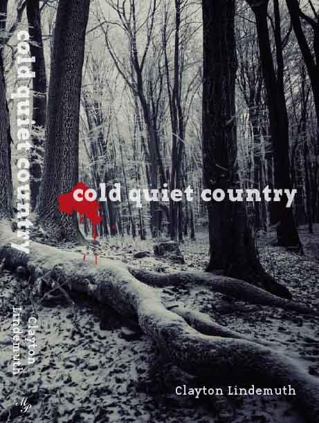 coldquietcountrycoverideas-7.jpg