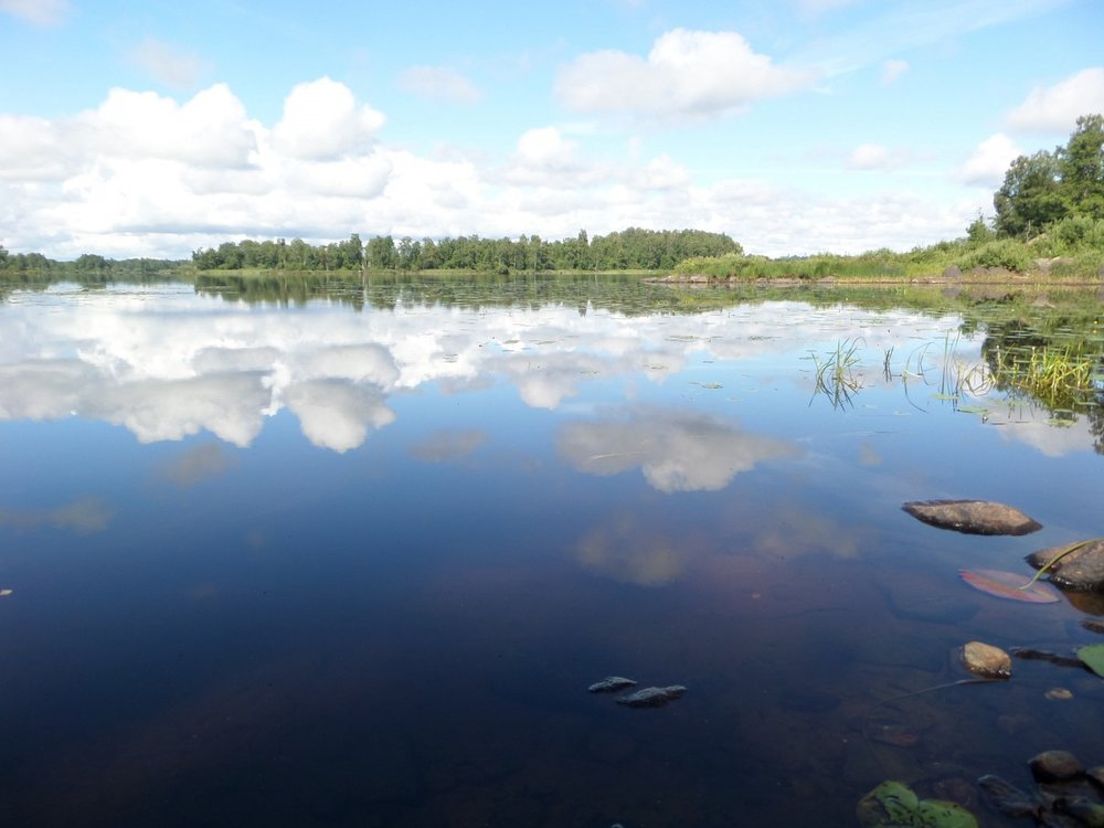reflection_lake_landscape_calm_summer_sweden_tranquil-1218590.jpeg