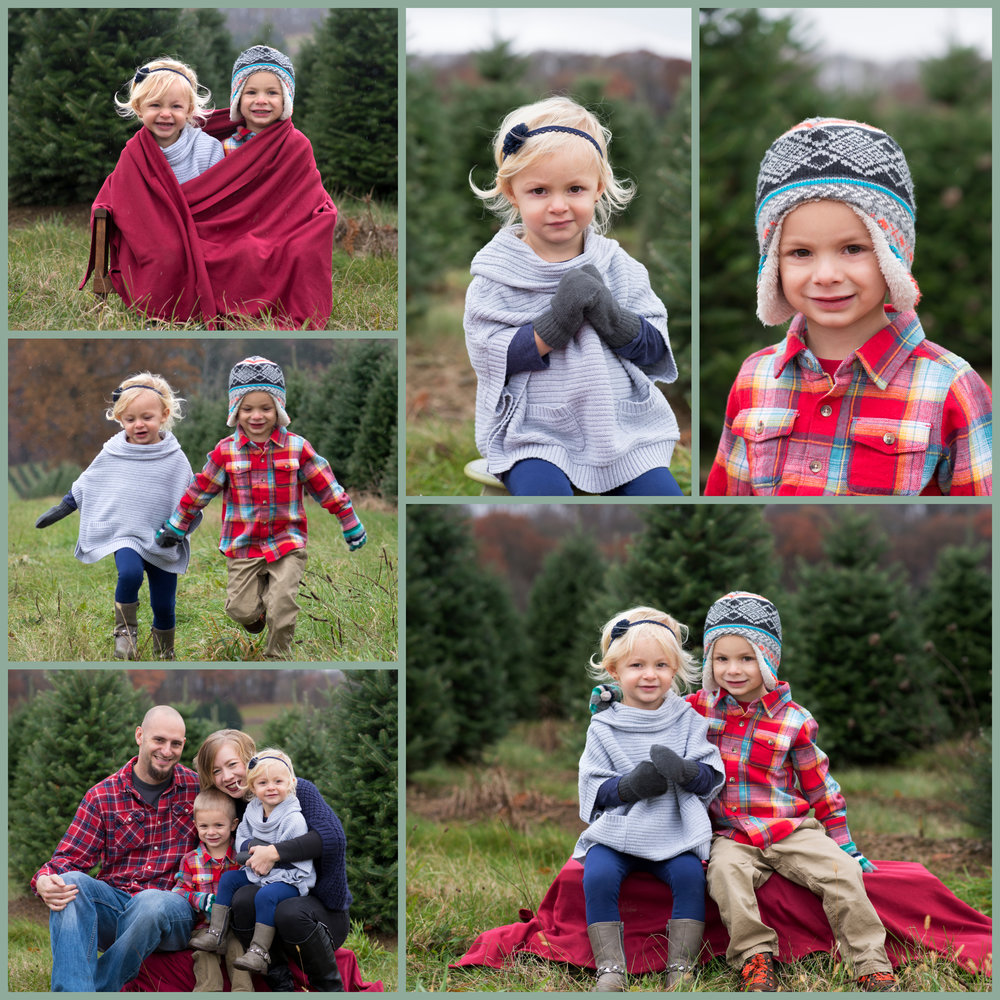 2018 Pittsburgh's Best Christmas tree farm photography.jpg