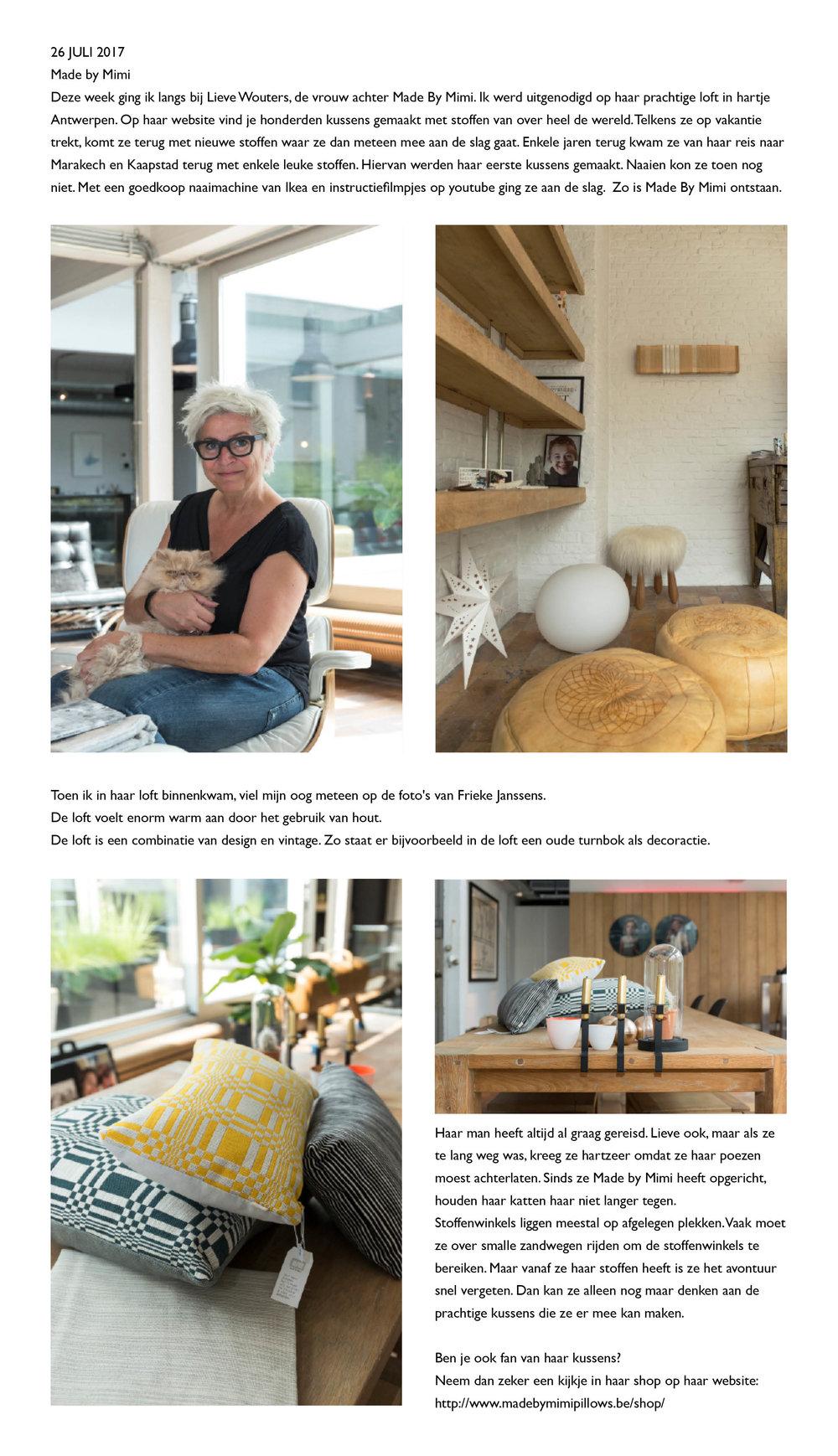 blogbericht Hanne Joossen26-7-2017.jpg