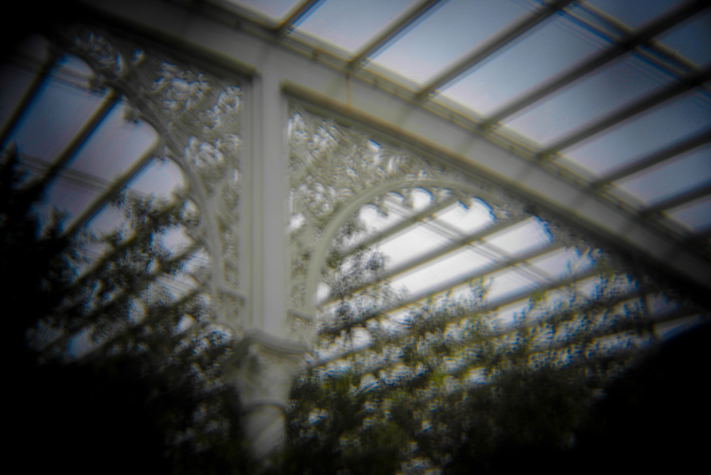botanic gardens holga (3 of 16).jpg