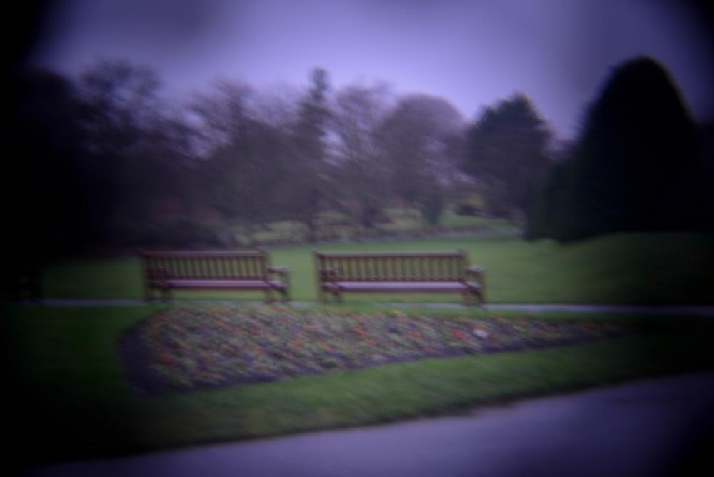 botanic gardens holga (7 of 16).jpg