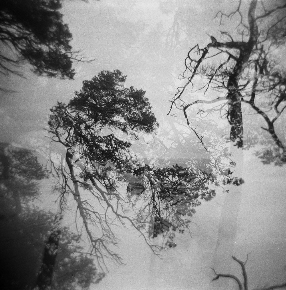 isle of skye holga (27 of 32).jpg