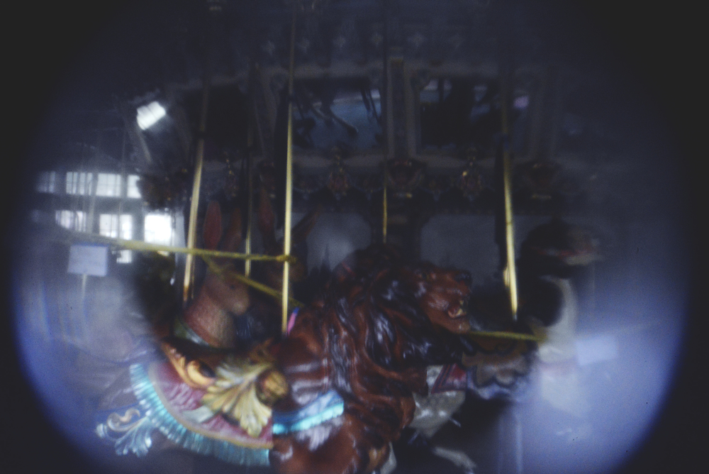 holga lens carousel 2.jpg