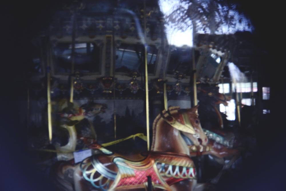 holga lense carousel 3.jpg