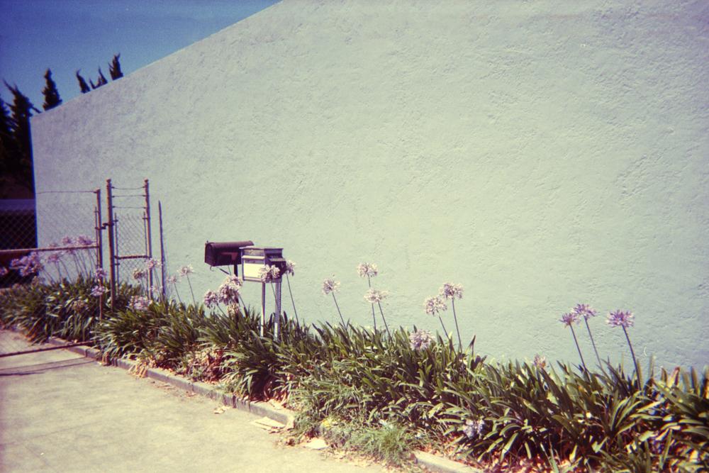 san fran 35mm (10).jpg