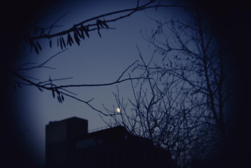 NYC highline holga lens moon.jpg