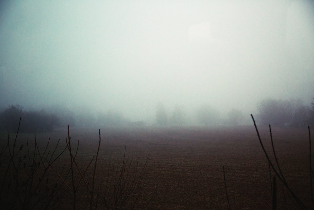 landscape-11 copy.jpg