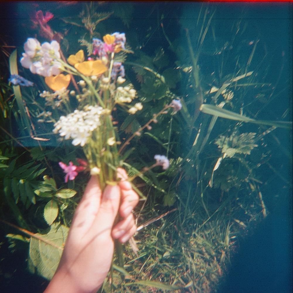 glasgow flowers holga.jpg