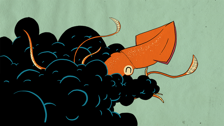 High-Seas---squid.jpg