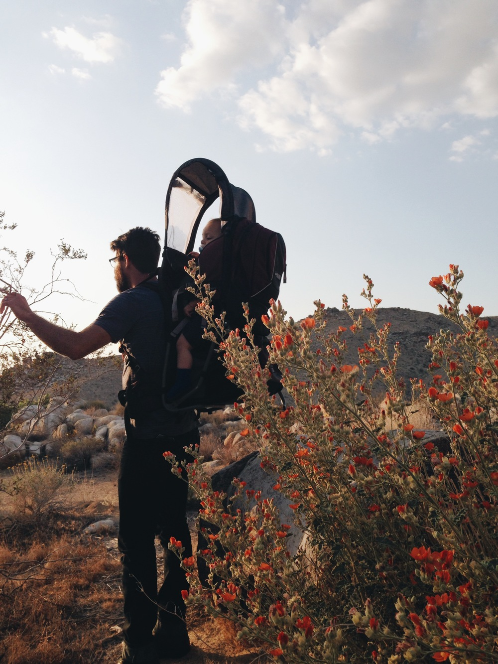 20140419 Desert Walk-104.jpg