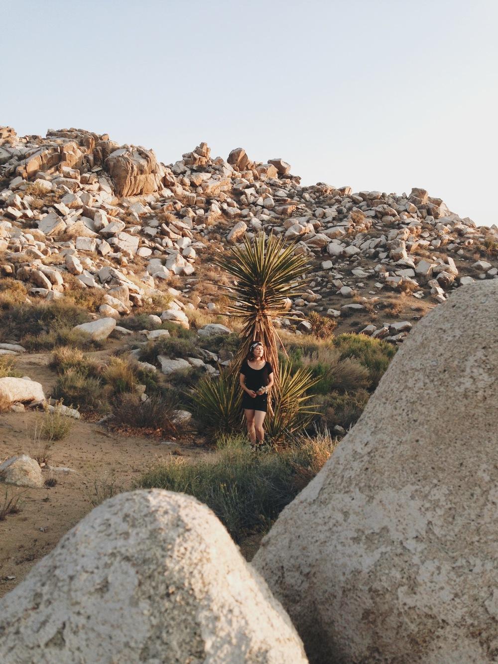 20140419 Desert Walk-107.jpeg
