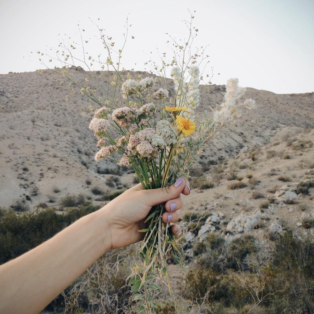 20140419 Desert Walk-111.jpg