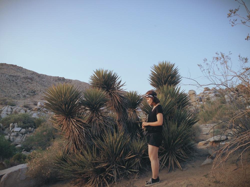 20140419 Desert Walk-113.jpeg