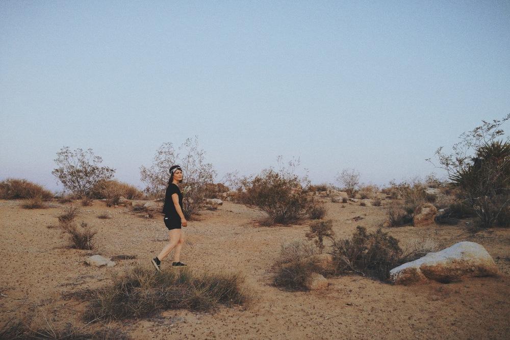 20140419 Desert Walk-117.jpeg