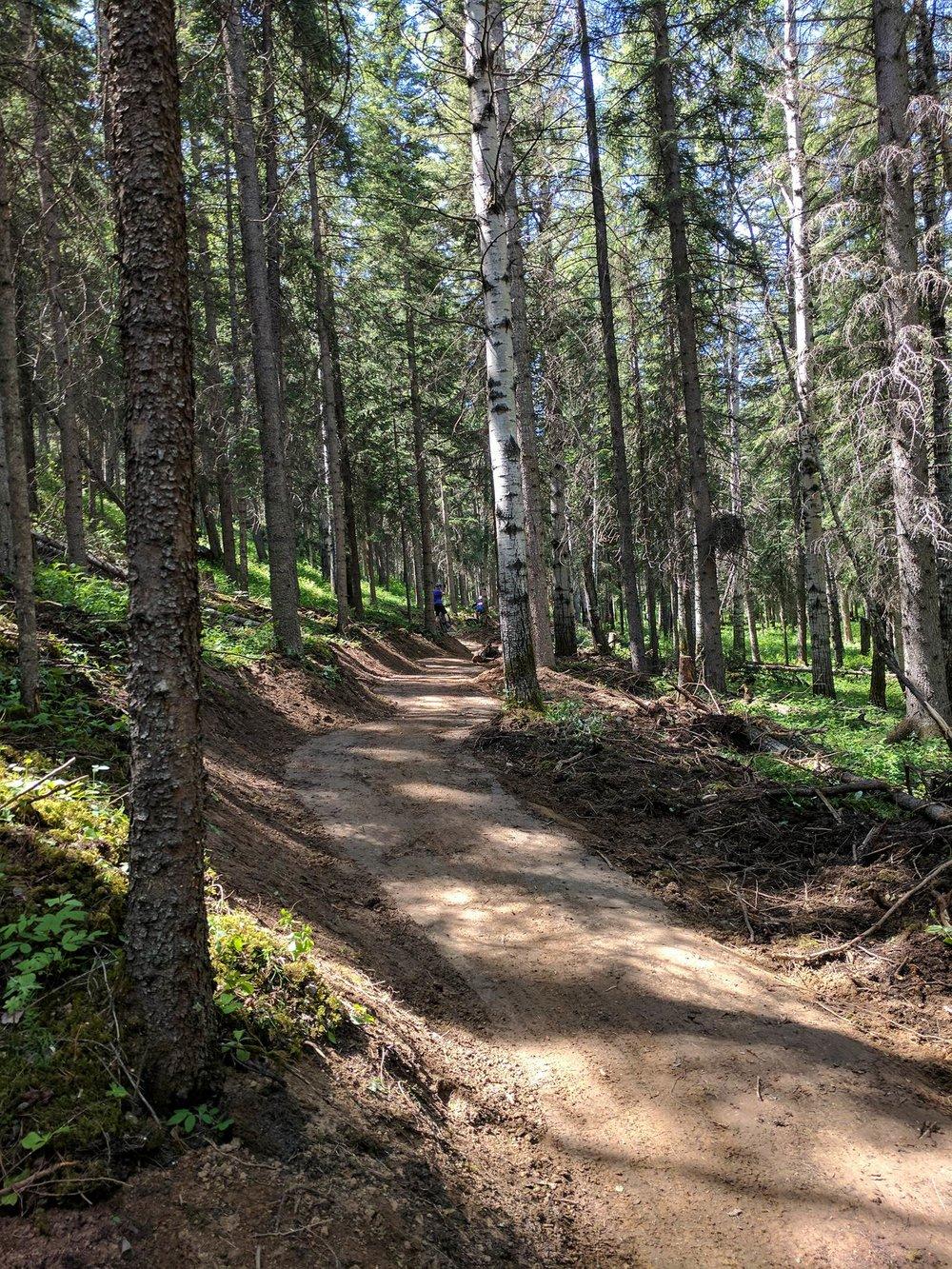 New trail!